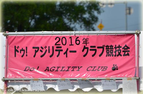 01*1-DSC_0977