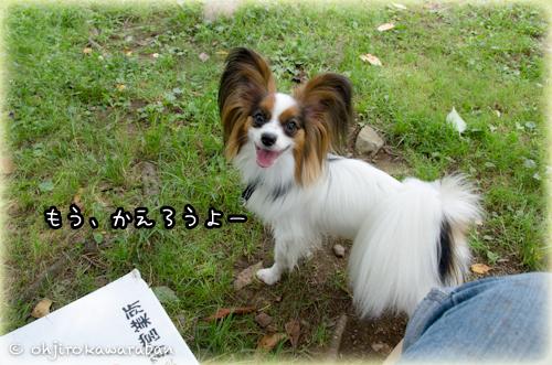 09*9-DSC_1875
