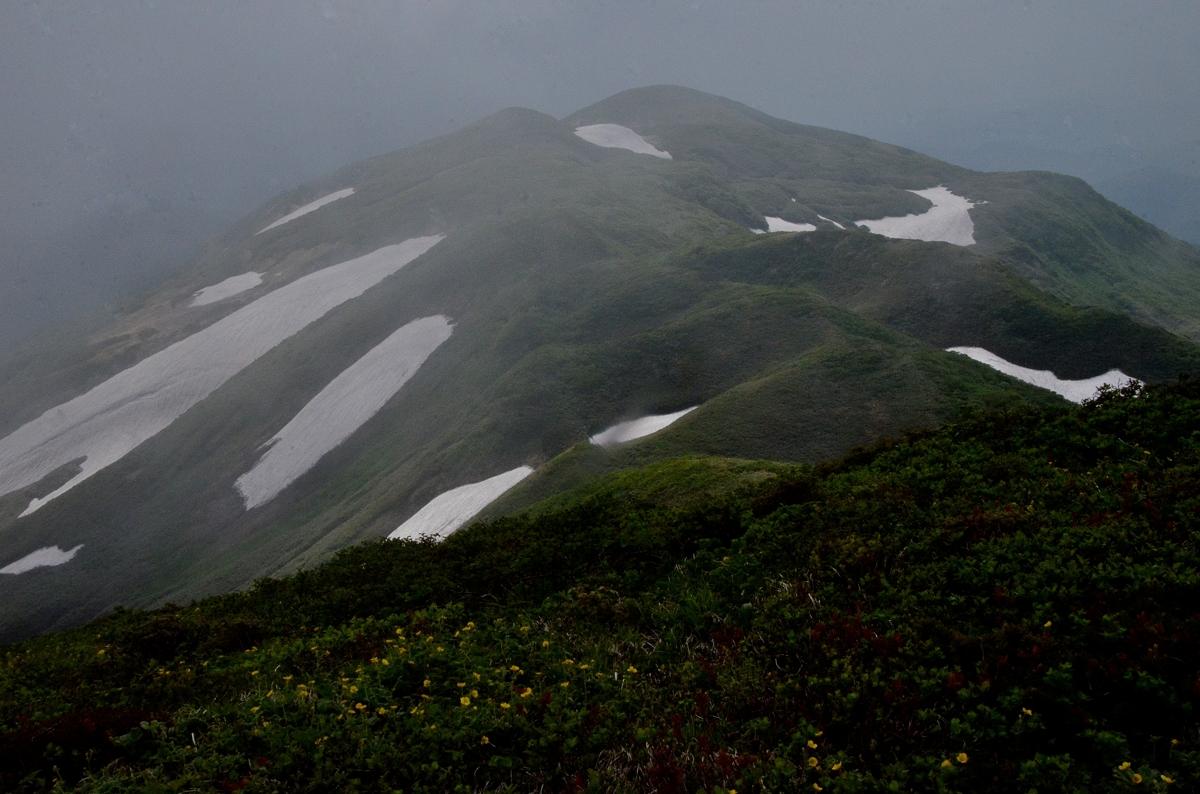 焼石岳2016 803-2s