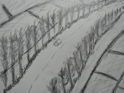 田舎の道を走る
