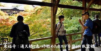 東福寺:通天橋と色づき始めたカエデを背に、臥雲橋