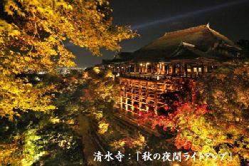清水寺:「秋の夜間ライトアップ」2016年