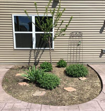 garden05041601.jpg