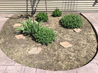 garden05041602.jpg