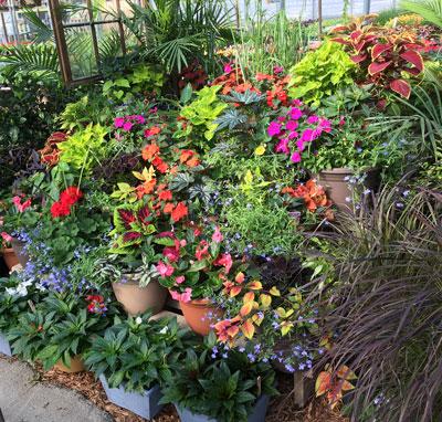garden05051502.jpg