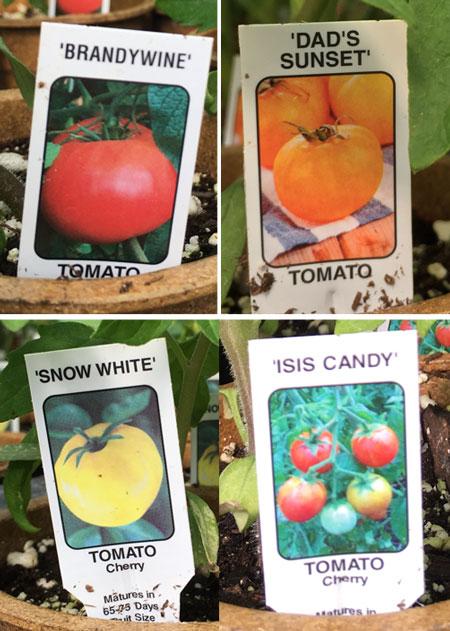 garden05051507.jpg