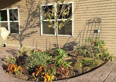 garden10221601.jpg