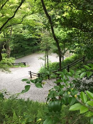 kiyomizu1622.jpg