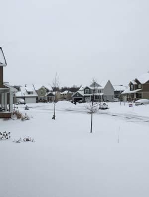 snow12111602.jpg