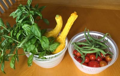 vegetables1601.jpg