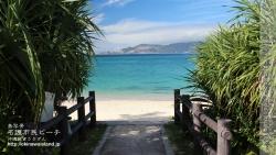 沖縄,デスクトップカレンダー,11月,海