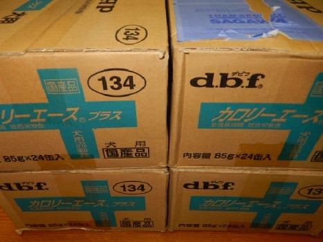 DSCN8407.jpg
