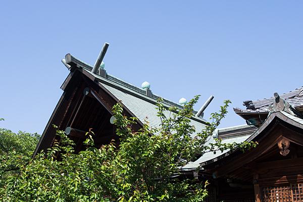 拝殿と本殿の屋根