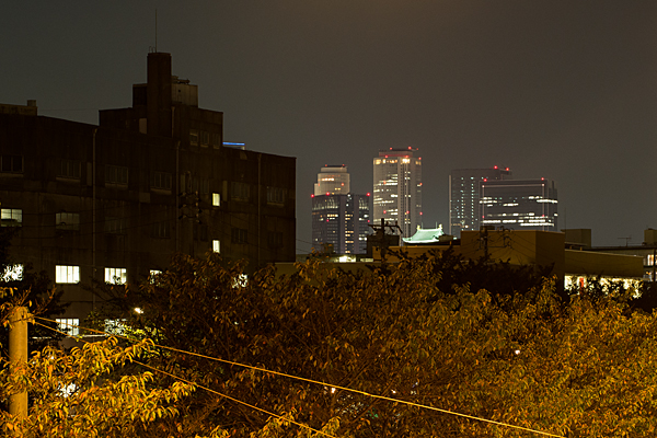名古屋城と名駅ビル群