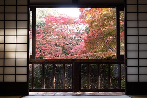 どうだん亭の紅葉風景