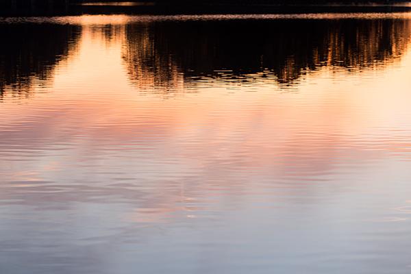 池に映る夕照