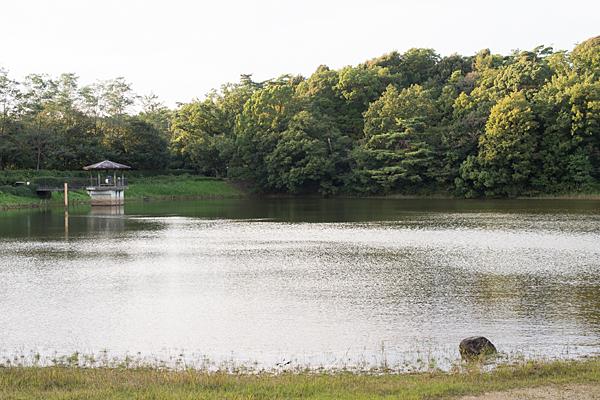 小幡緑地竜巻池