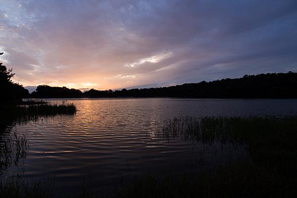 緑ヶ池夕暮れどき