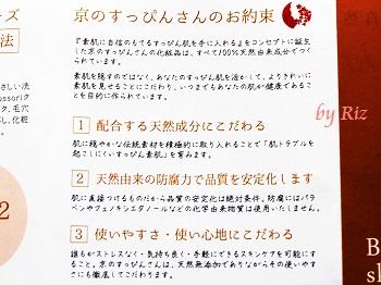 ナチュラルミスト浸-Shin-のパンフレット