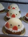文鳥ケーキ3