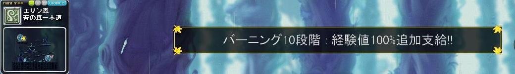 Maple18.jpg