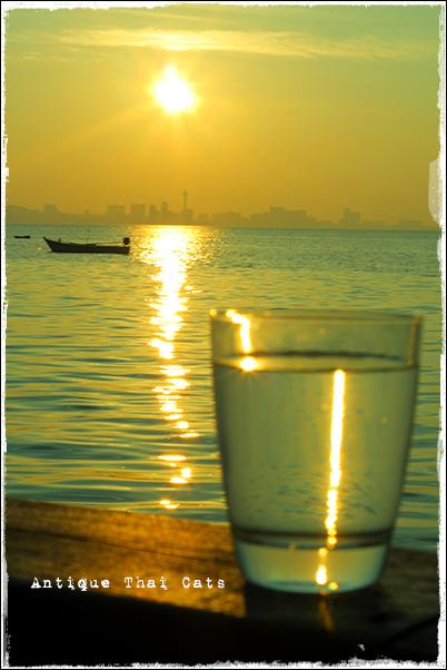パタヤ Pattaya พัทยา ラーン島 เกาะล้าน Koh laan Island タイ Thai ไทย