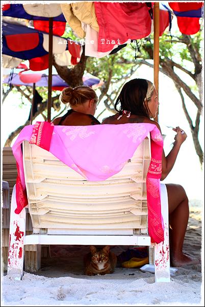 お出かけ ちゃっかり猫 ラーン島 Koh Larn เกาะล้าน island タイ Thai ไทย パタヤ Pattaya พัทยา 砂浜 beach หาดทราย 海 sea ทะเล