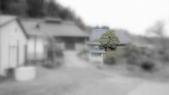 DSCN4742_2016041419215609d.jpg