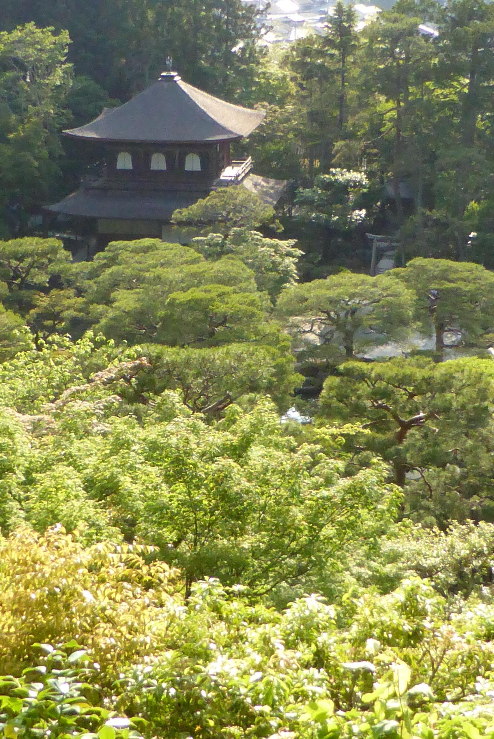 銀閣寺門と背景の東山