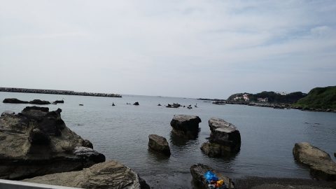 小さくて分かりづらいですが、岩に海鳥がシュッとしてとまってました。