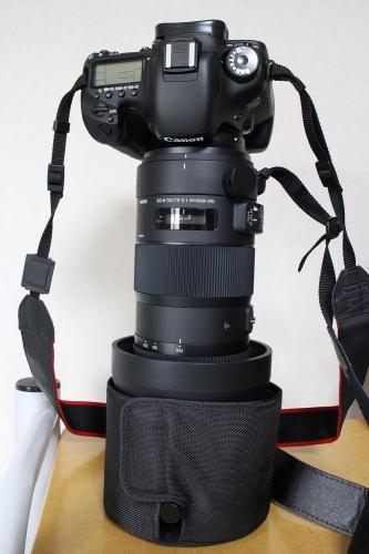 EOS 7D+150-600mm F5-6.3 DG