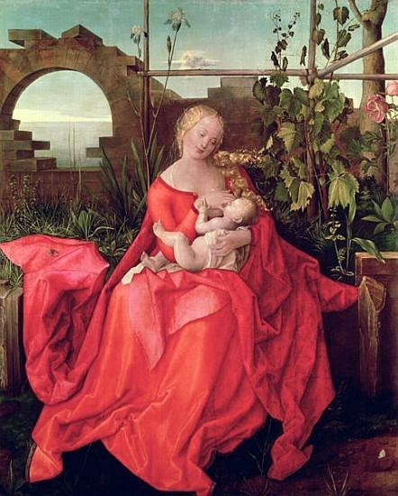 アルブレヒト・デューラー 『Virgin with the Iris』1508年