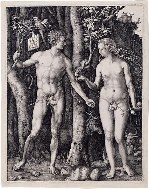 アルブレヒト・デューラー『Adam and Eve』 1504