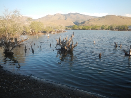28 lake