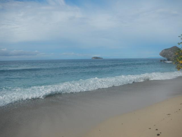 11 島の浜