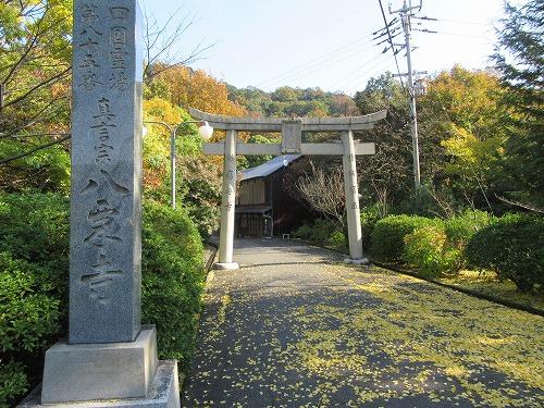 1612yakuriji006.jpg
