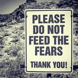 Please do not feed the fears, thank you!