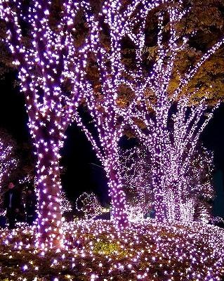 新宿がピンク一色★