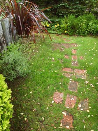 my-garden 023 (3)