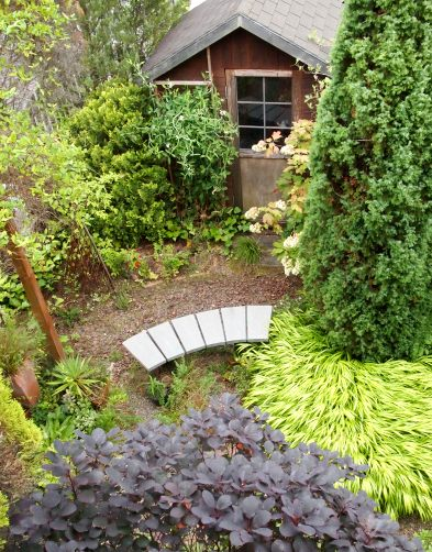my-garden 143