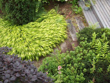 my-garden 147