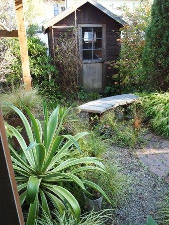 my-garden 074
