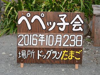 ペペッ子会01