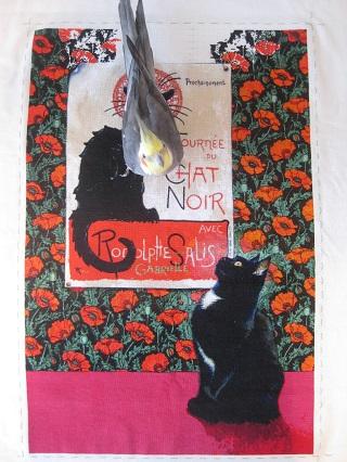 黒猫2016-7月