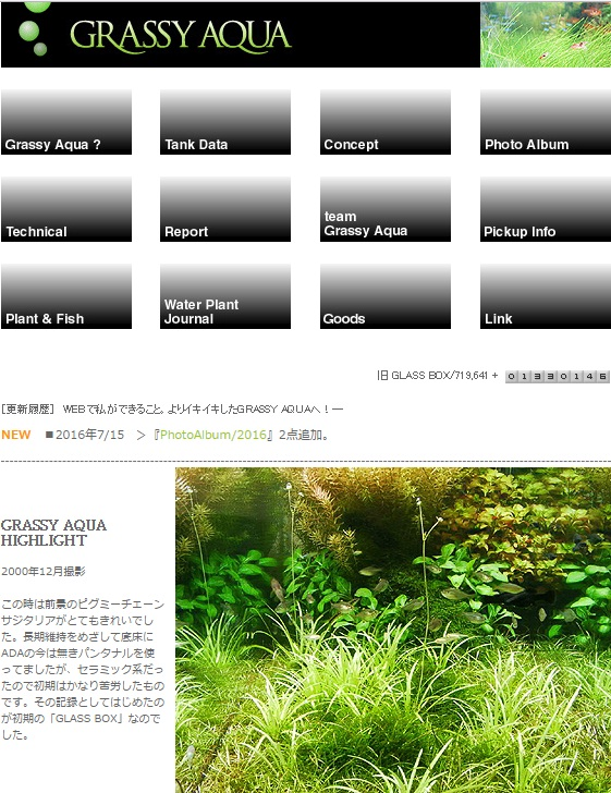 Grassy_aqua.jpg