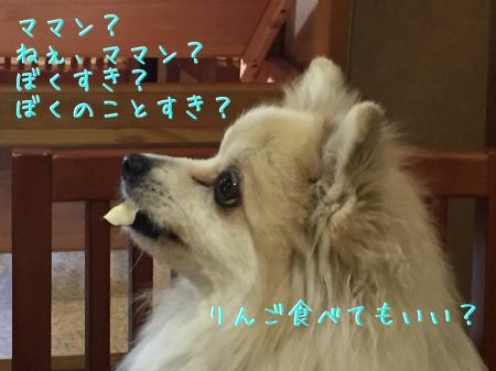 IMG_4463_convert_20161028102254.jpg