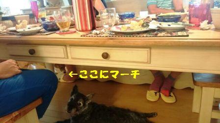 1470619474222-17.jpg