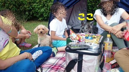 nihonsyu12.jpg