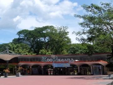 マレーシア136動物園