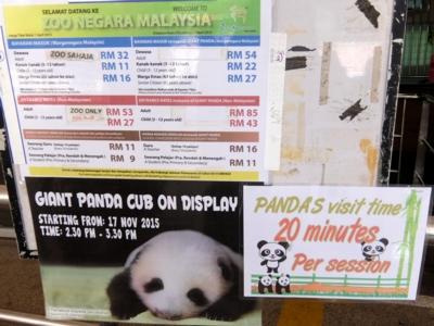 マレーシア137動物園